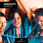 Alpaca Ensemble 20 år